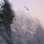Bildschirmfoto 2014-11-04 um 12.44.48
